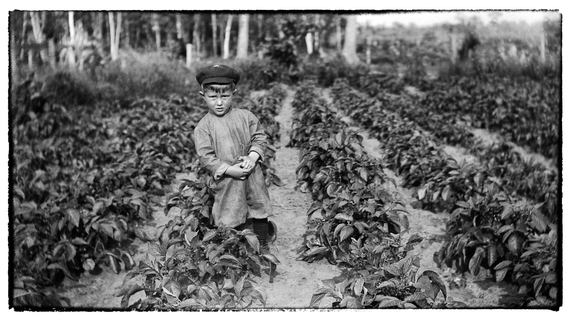 Boy standing/farmlife//Wadena/MN/lifestyle photo