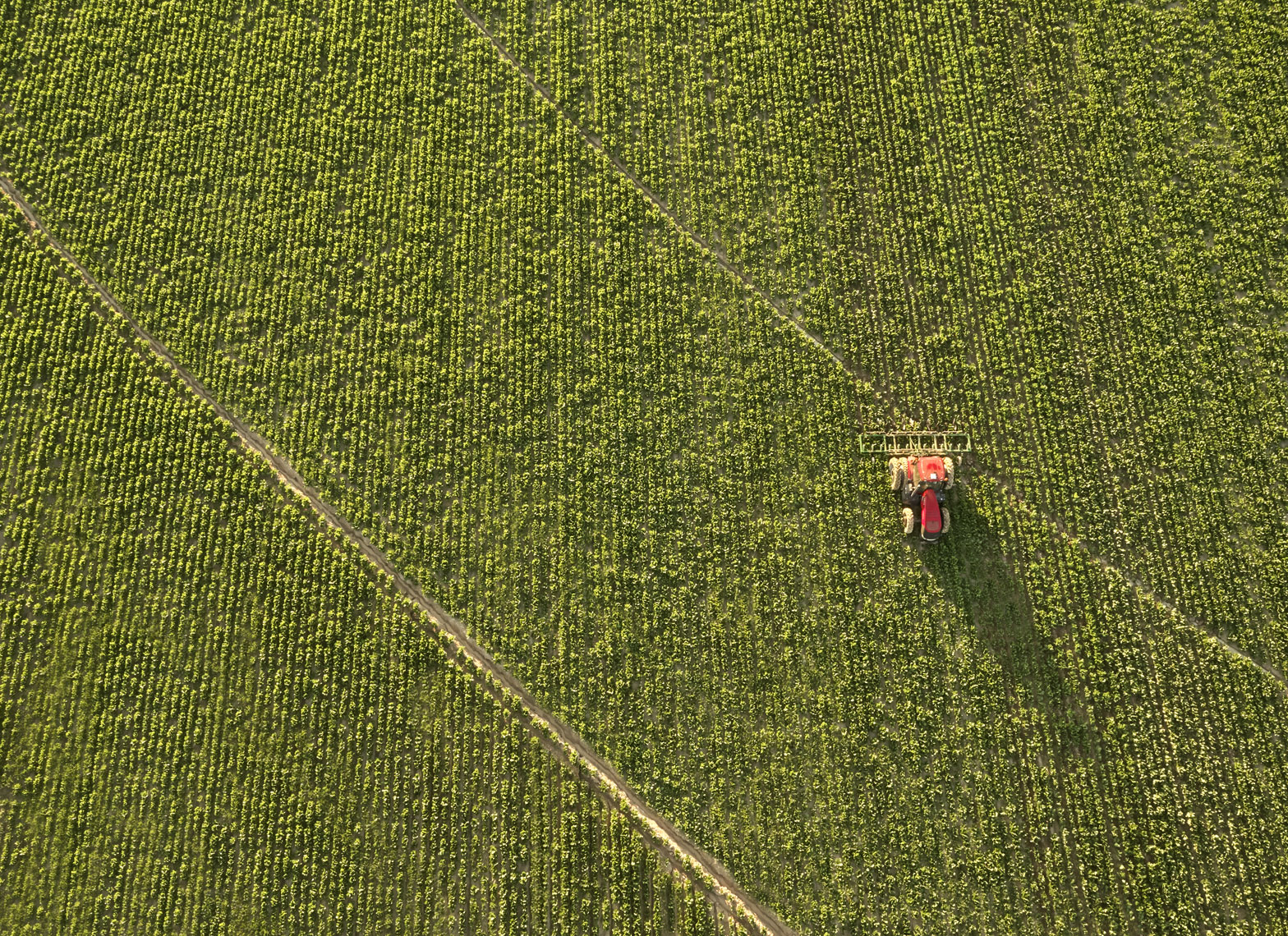 Red tractor/field/pestiside/arial drone photography