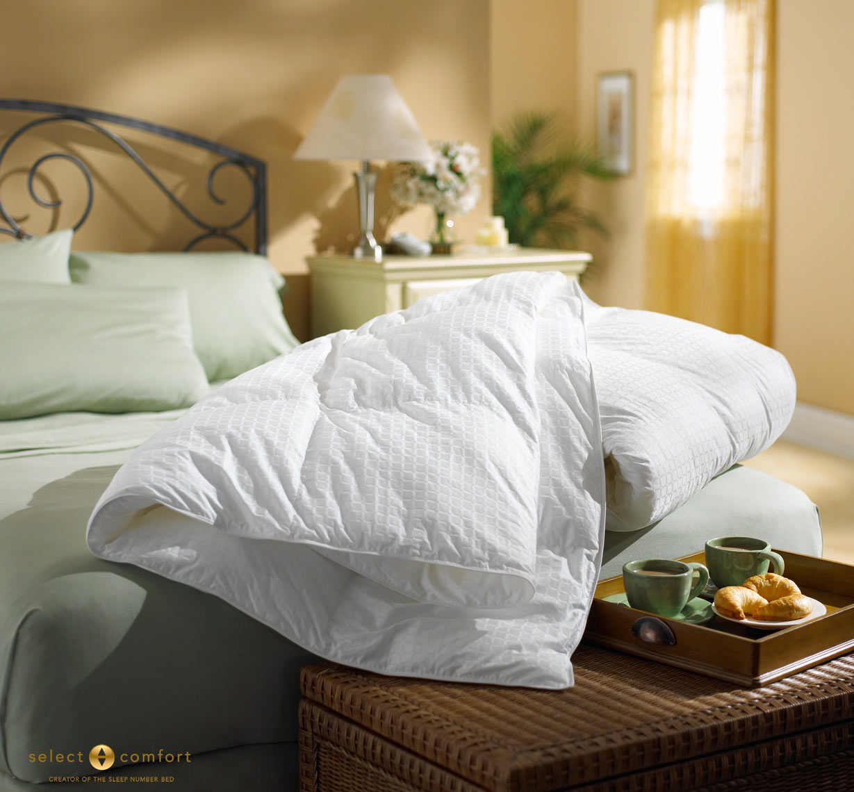 Gift-W-Purchase-Comforter-2