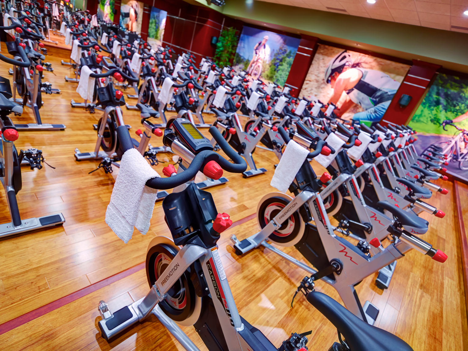 Lifetime Exercise equipment/Stationary bikes/location photo