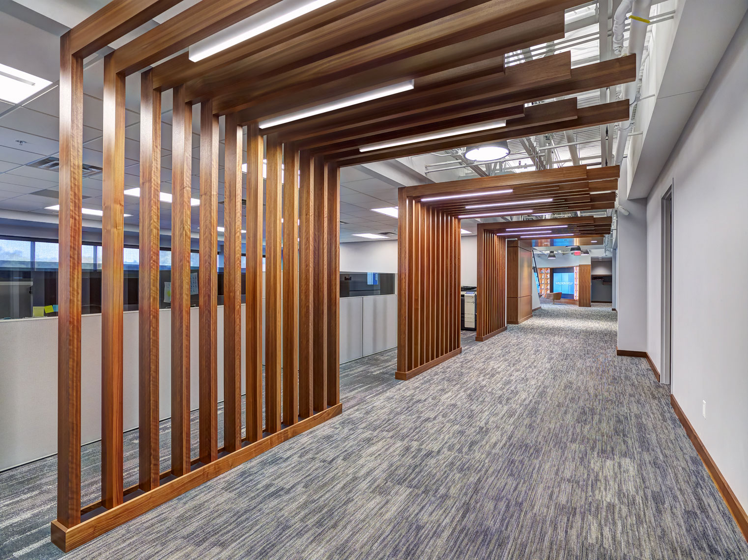 Wilson Wolf/office hall/wooden accents/architectural photography