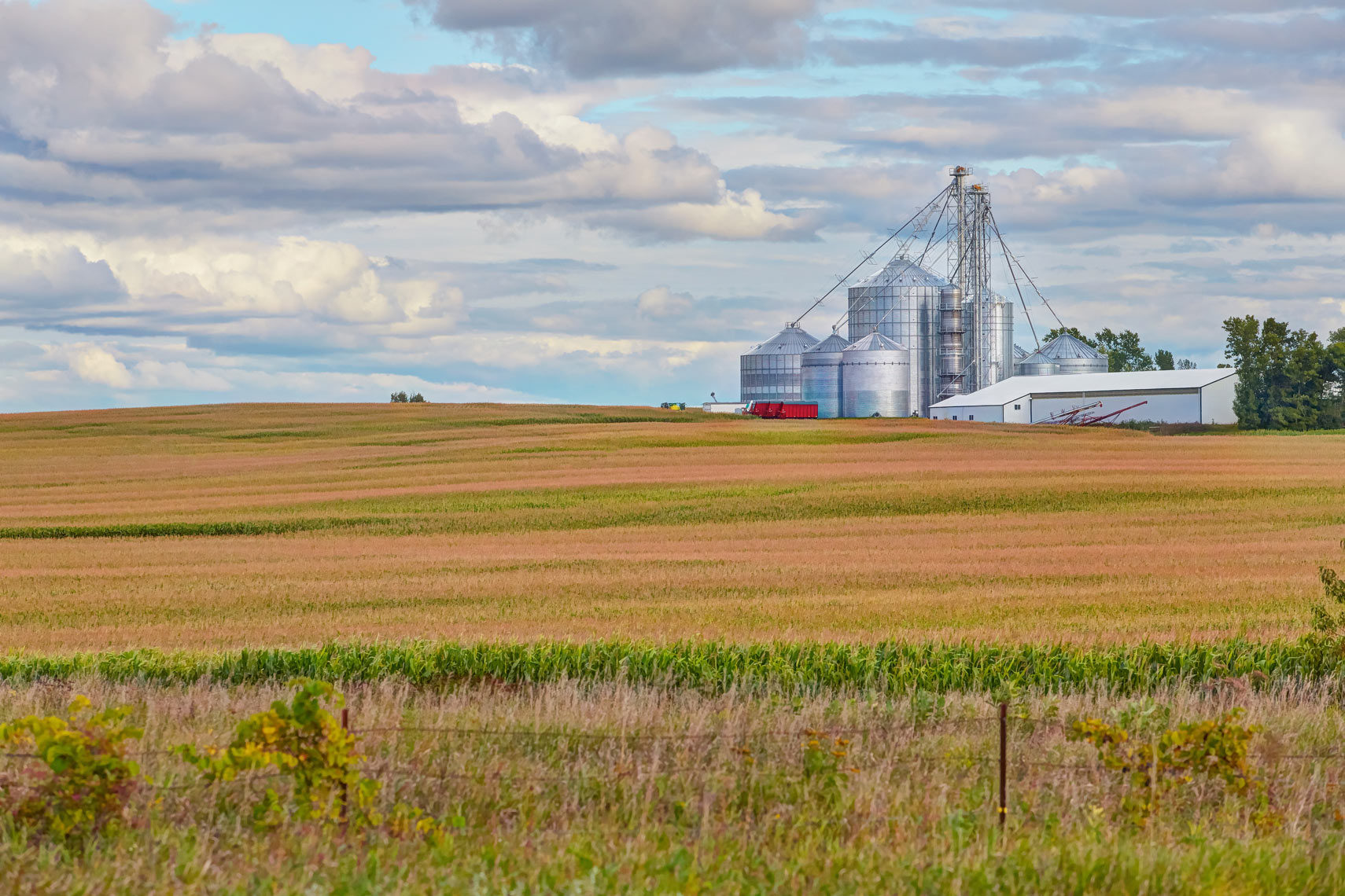 Farm field/autumn/silver silos/agriculture photography