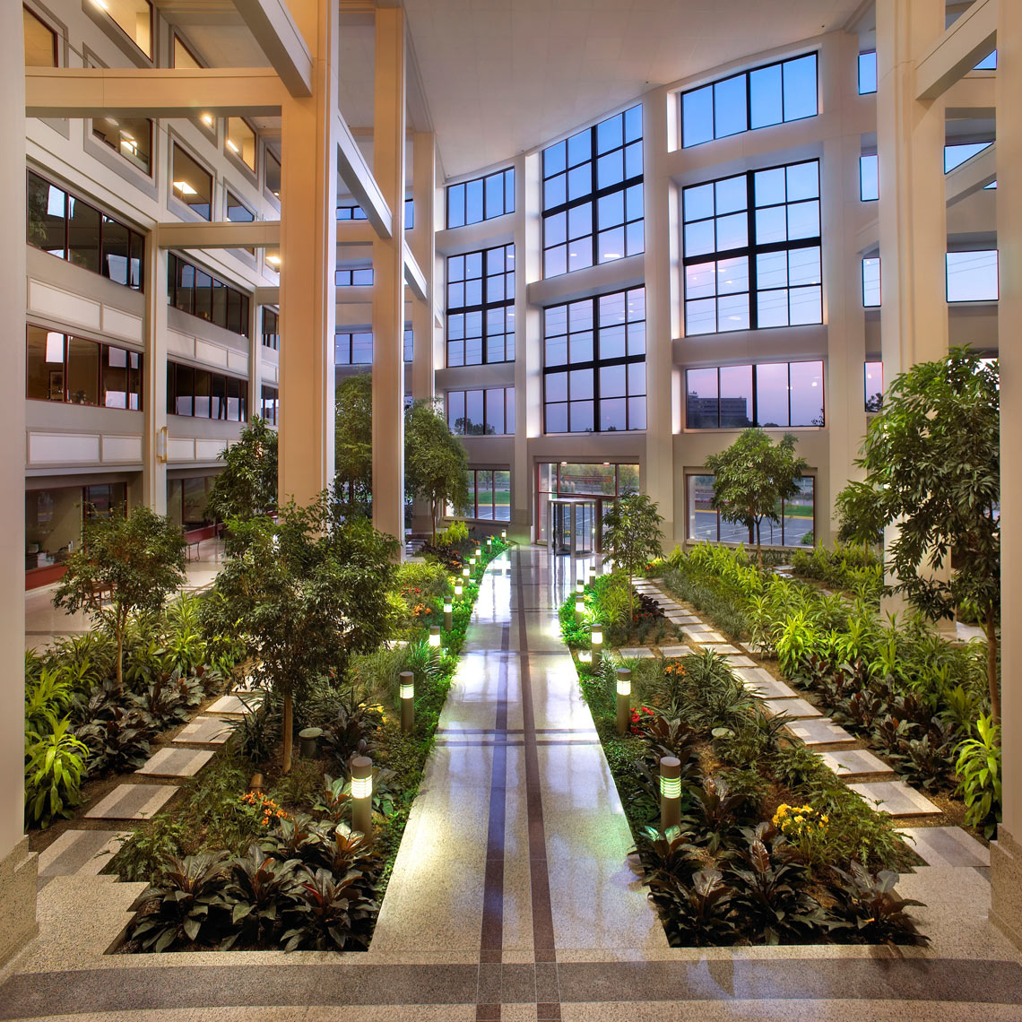 Planted atrium of Bachman's/4 story/glassed front/architectural photo